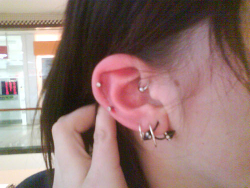 http://body-jewelry-guide.com/wp-content/uploads/2009/06/my-chosen-passion-ear-piercing-story.jpg